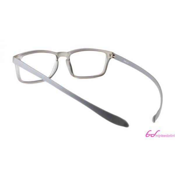 Leesbril Proximo PRII058-C94-Gray-+1.50-3-AVA1008150