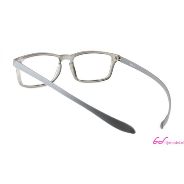 Leesbril Proximo PRII058-C94-Gray-+3.00-3-AVA1008300