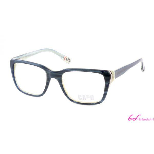 Leesbril Capo Don Vito C3 blauw / groen-3-MOR1018