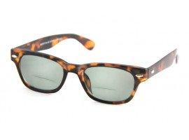 Leeszonnebril INY Woody Sun Bifocaal G13600 havanna | mijnleesbril.nl